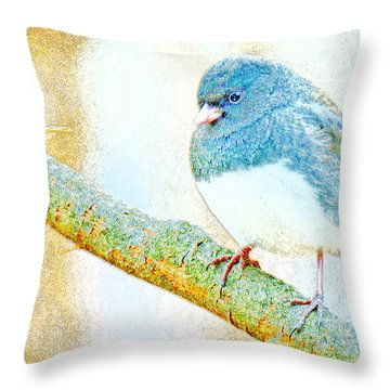 Throw Pillow featuring the digital art Slate Colored Junco Snowbird Male Animal Portrait by A Gurmankin