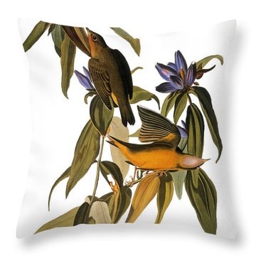 Audubon: Warbler, (1827-38) Throw Pillow by Granger