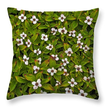A Bunch Of Bunchberries Throw Pillow by Tony Beck