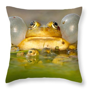 A Frog's Life Throw Pillow by Roeselien Raimond