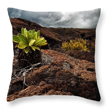 A Hard Existence Throw Pillow by Christopher Holmes