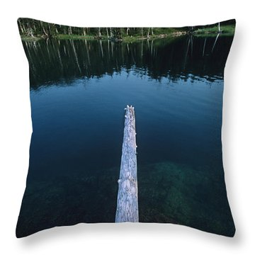 A Log Juts Out Over A Lake Throw Pillow by Bill Hatcher