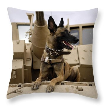 A Military Working Dog Sits On A U.s Throw Pillow by Stocktrek Images