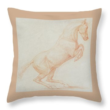 A Prancing Horse Throw Pillow by George Stubbs
