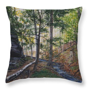 A Walk In The Woods Throw Pillow by Vicky Path