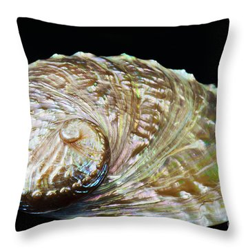 Abalone Shell Throw Pillow by Bill Brennan - Printscapes