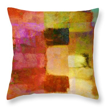 Abstract Study One Throw Pillow by Ann Powell