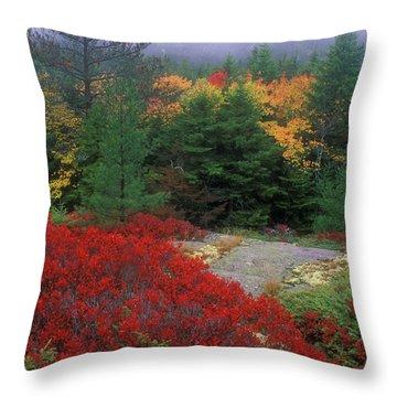 Acadia National Park Foliage Throw Pillow by John Burk
