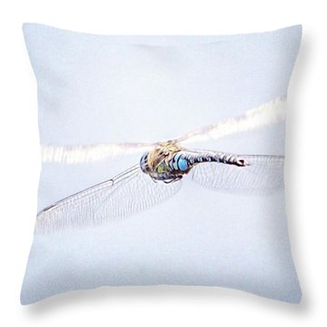 Aeshna Juncea - Common Hawker In Throw Pillow by John Edwards