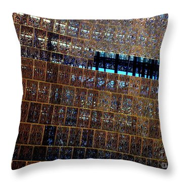 African American History And Culture 3 Throw Pillow by Randall Weidner