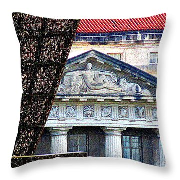 African American History And Culture 5 Throw Pillow by Randall Weidner