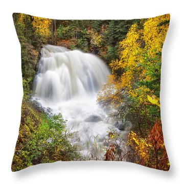 After The Rain Throw Pillow by Ed Boudreau