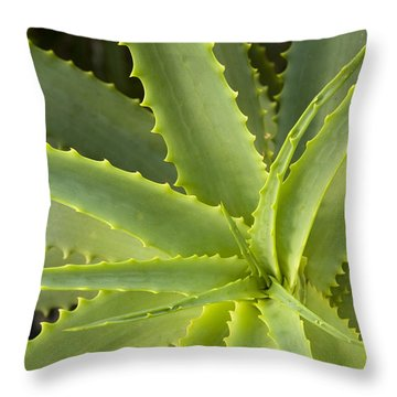 Agave  Big Sur California Throw Pillow by Sebastian Kennerknecht