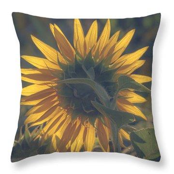 Aglow Throw Pillow by Chris Fletcher