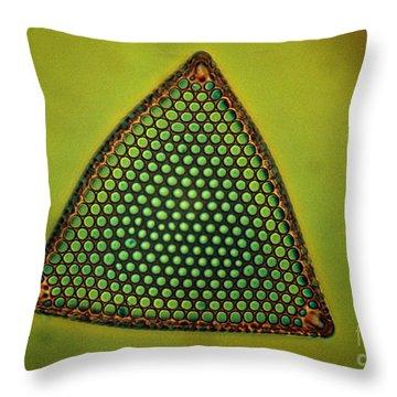 Algae, Diatom, Triceratium Ladus, Lm Throw Pillow by Eric Grave
