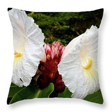 All Ears Throw Pillow by Christopher Holmes