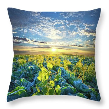 All Joined As One Throw Pillow by Phil Koch