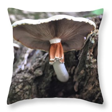 Amanita Throw Pillow by Chris Flees