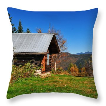 American Dream Throw Pillow by Catherine Reusch  Daley
