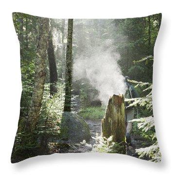 Ammonoosuc Ravine Trail - White Mountains New Hampshire Usa Throw Pillow by Erin Paul Donovan