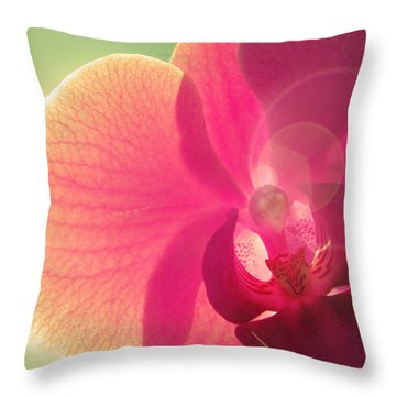Amoroso Throw Pillow by Amy Tyler