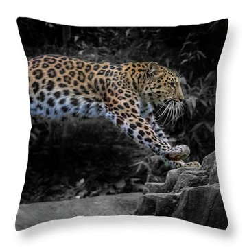 Amur Leopard On The Hunt Throw Pillow by Martin Newman