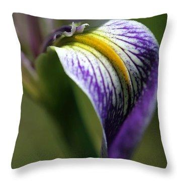 An Iris Petal Throw Pillow by Sabrina L Ryan