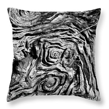 Ancient Stump Throw Pillow by Christopher Holmes