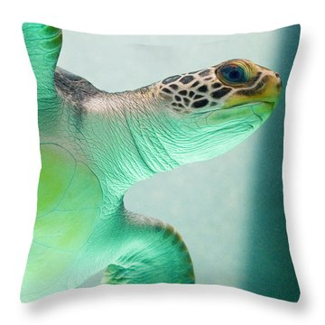 Angel 2 Throw Pillow by Skip Hunt