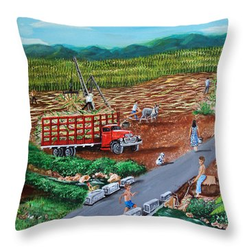 Anoranzas Throw Pillow by Luis F Rodriguez