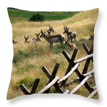Antelope 2 Throw Pillow by Marty Koch