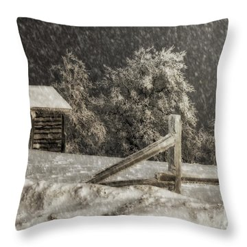 Any Port In A Storm Throw Pillow by Lois Bryan