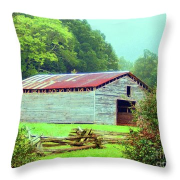 Appalachian Livestock Barn Throw Pillow by Desiree Paquette
