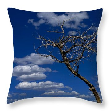 Apparition Throw Pillow by Skip Hunt
