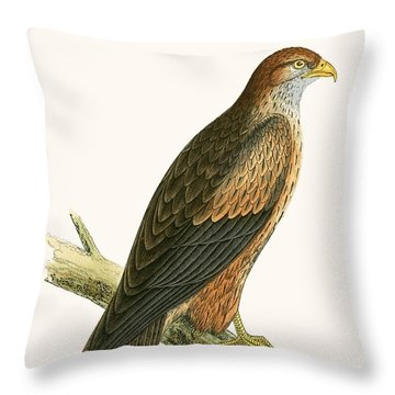 Arabian Kite Throw Pillow by English School