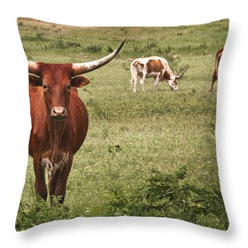 Are You Talking To Me Throw Pillow by Tamyra Ayles