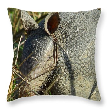 Armadillo By Morning Throw Pillow by Robert Frederick