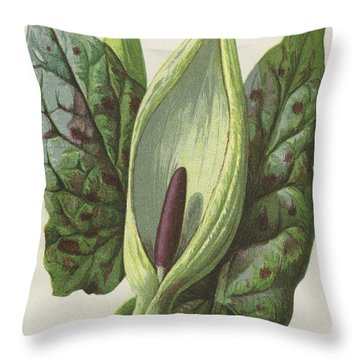 Arum, Cuckoo Pint Throw Pillow by Frederick Edward Hulme