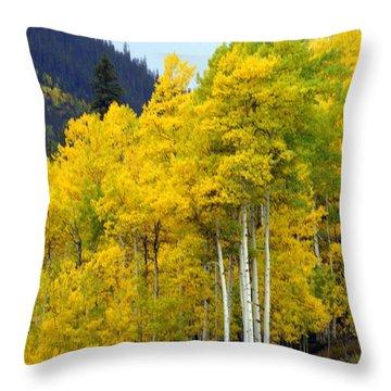 Aspen Fall Throw Pillow by Marty Koch