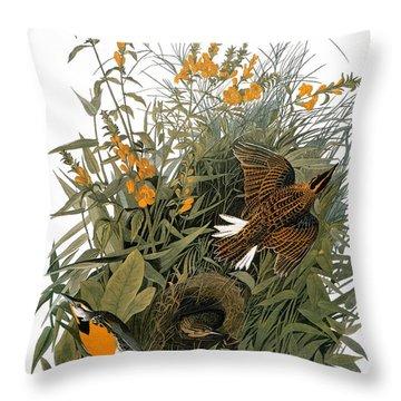 Audubon: Meadowlark Throw Pillow by Granger