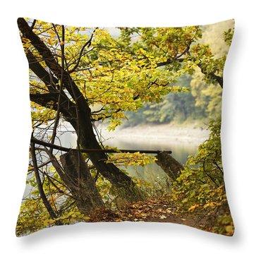 Autumn 9 Throw Pillow by Dominika Aniola