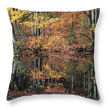 Autumn Colors Reflect Throw Pillow by Karol Livote