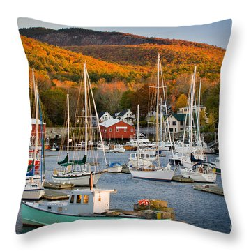 Autumn Gold Throw Pillow by Susan Cole Kelly