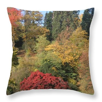 Throw Pillow featuring the photograph Autumn In Baden Baden by Travel Pics