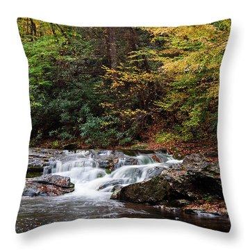 Autumn In The Smokies Throw Pillow by Andrew Soundarajan