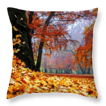 Autumn In The Woodland Throw Pillow by Hannes Cmarits