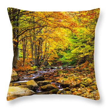 Autumn Landscape Throw Pillow by Evgeni Dinev