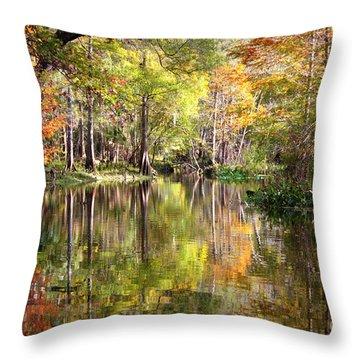 Autumn Reflection On Florida River Throw Pillow by Carol Groenen