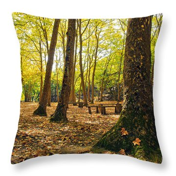 Autumn Scenery Throw Pillow by Carlos Caetano