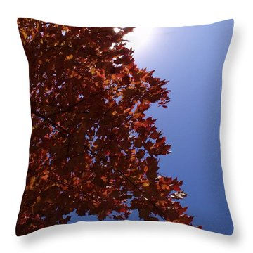 Autumn Sky I Throw Pillow by Anna Villarreal Garbis